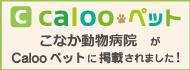 caloo_ban.png