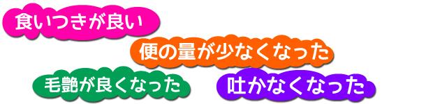 o_a_01.jpg